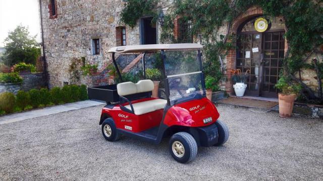 Vendita di batterie per golf car